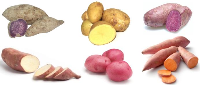 Varietà di patate e tagli